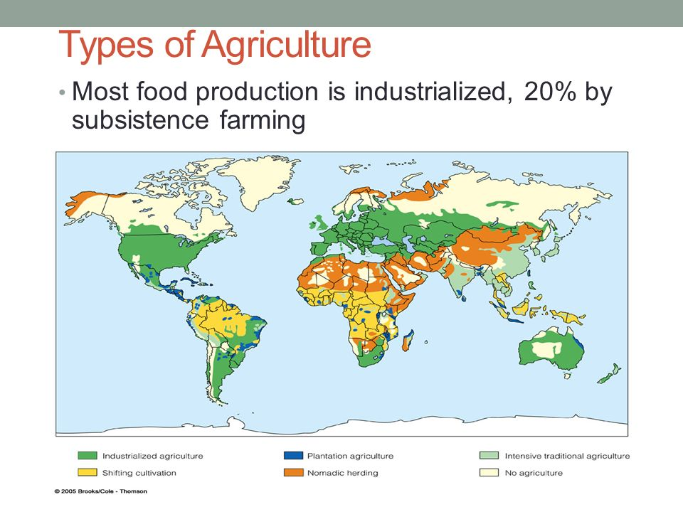 soil agriculture and food chain Productive lands are lost annually through soil chain 6 avoid diverting food crops and productive land for food and agriculture: the future of sustainability.