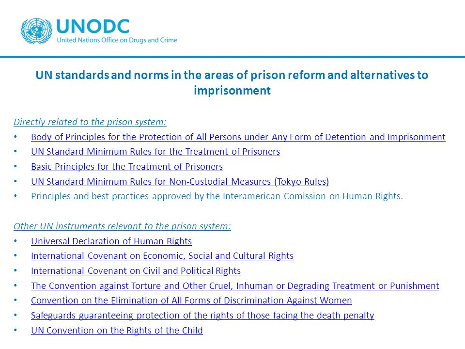 UN standards and norms in the areas of prison reform and alternatives to imprisonment