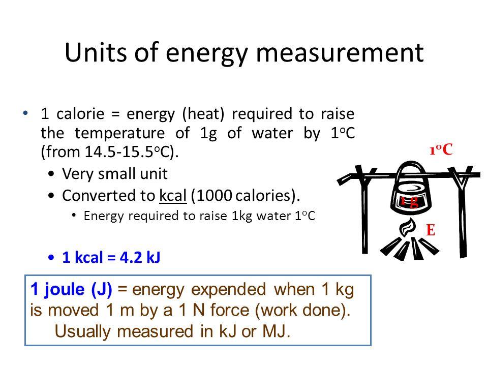 Images of Calories In Kilogram Force Meters - #rock-cafe