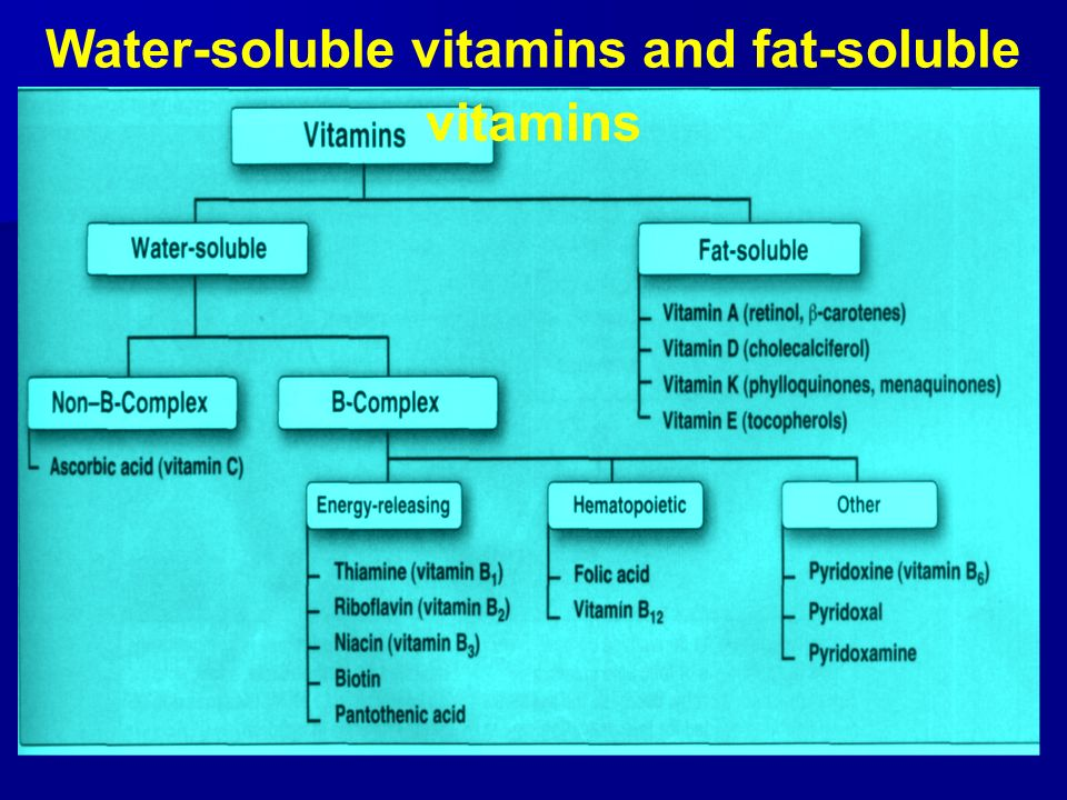 sci241 fat and water soluble vitamins There are two types of vitamins water soluble and fat soluble water-soluble vitamins are easily absorbed by the body these types of vitamins are.