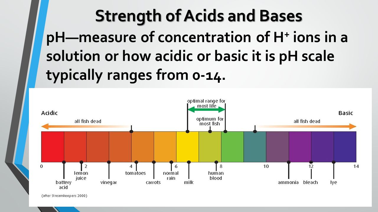 chemistry project acids and bases ph scale Acids and bases: cabbage juice ph indicator ph scale separately acids and bases are found in a variety of everyday items, including food and drink.