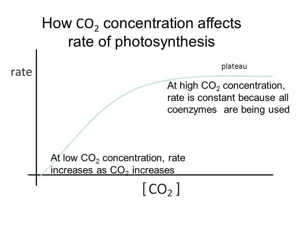 how the concentration affects the rate Free essay: decomposition of sodium thiosulphate aim: the aim or purpose of this investigation is to explain how concentration affects the rate of reaction.