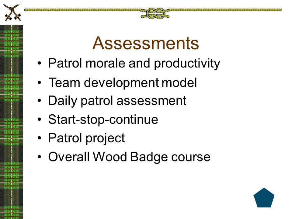 Assessments Patrol morale and productivity Daily patrol assessment