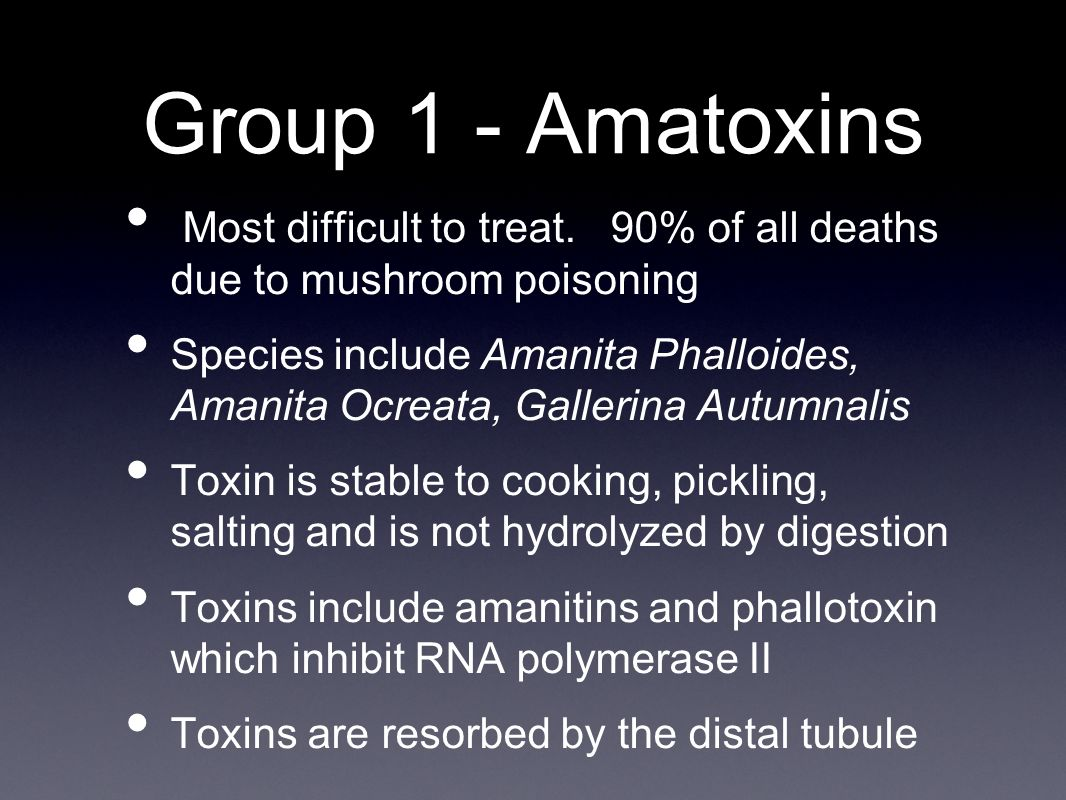 amanita phalloides mushroom toxin