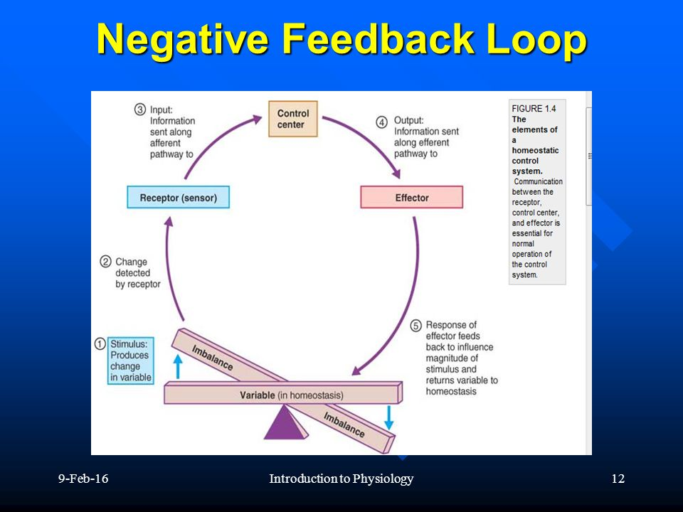 Feedback systems for controlling body functions - ppt ...