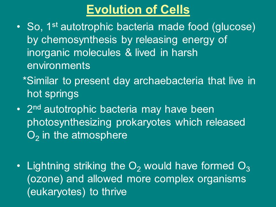 chemosynthesis theory Photosynthesis is the process by which plants and other things make food it is a chemical process that uses sunlight to turn carbon dioxide into sugars that the cell.