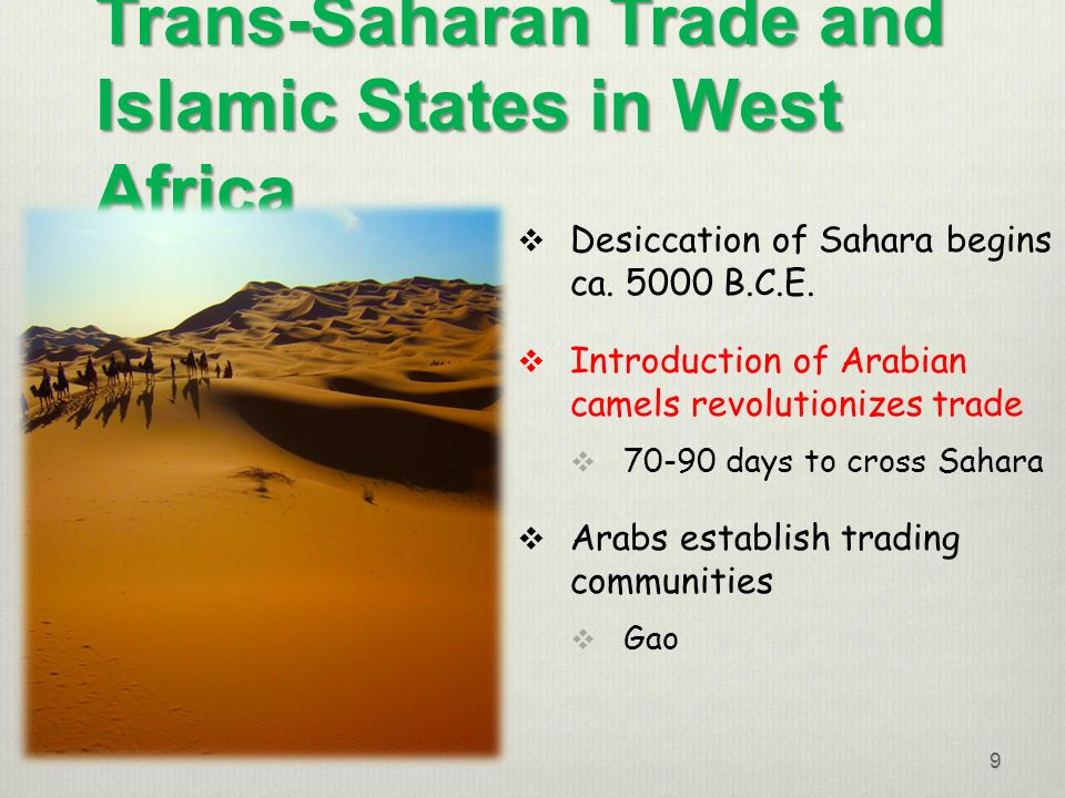 influence of trans saharan trade on west I don't know about west africa in particular, but i can tell you about the effects in general: the trans-saharan trade routes affected many things.