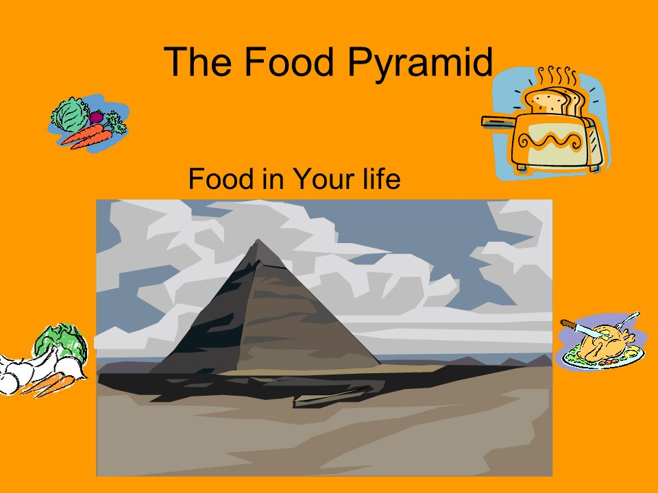The Food Pyramid Food in Your life