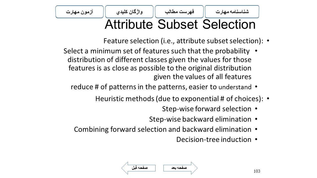Attribute Subset Selection
