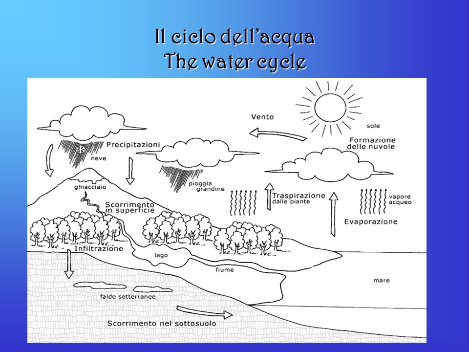 Il ciclo dell'acqua The water cycle