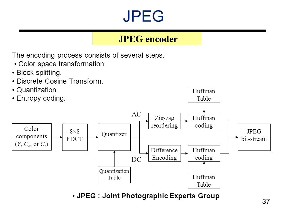 Lecture 5 image compression ppt video online download for Quantization table design revisited for image video coding