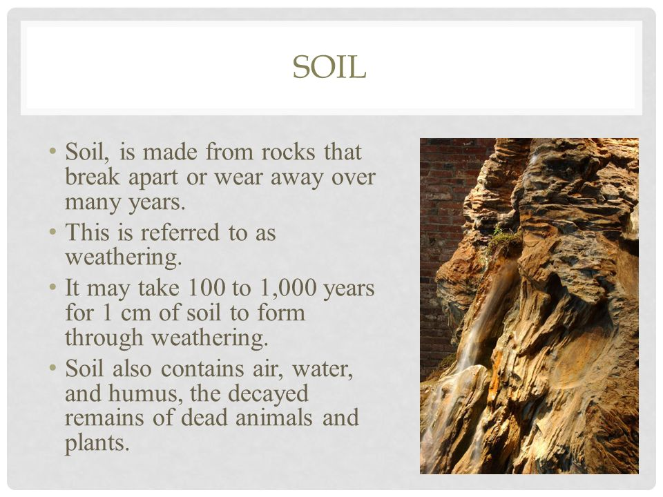 What is the dirt on soil ppt download for What is dirt composed of