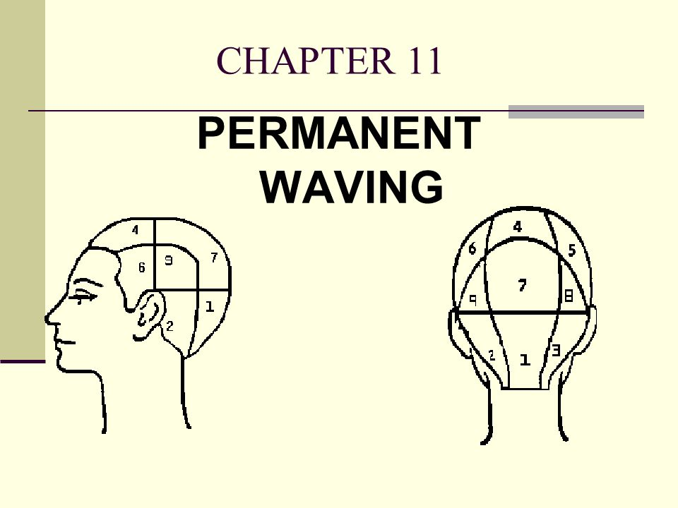 CHAPTER 11 PERMANENT WAVING