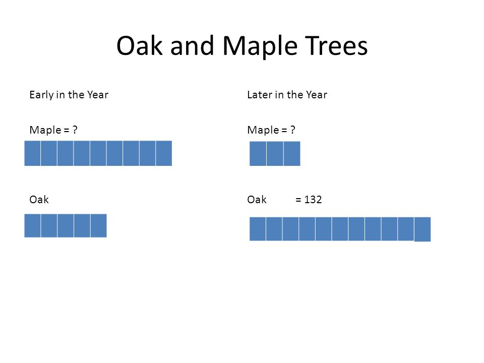 Oak and Maple Trees Early in the Year Later in the Year Maple = Maple = Oak Oak = 132