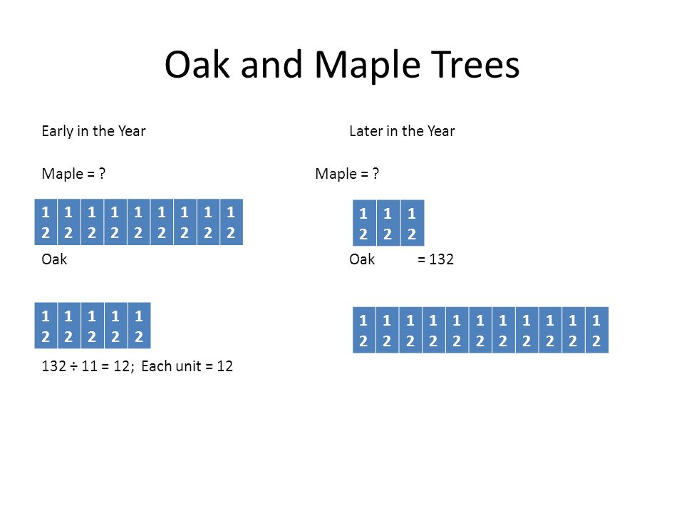 Oak and Maple Trees Early in the Year Later in the Year Maple = Maple = Oak Oak = 132 132 ÷ 11 = 12; Each unit = 12