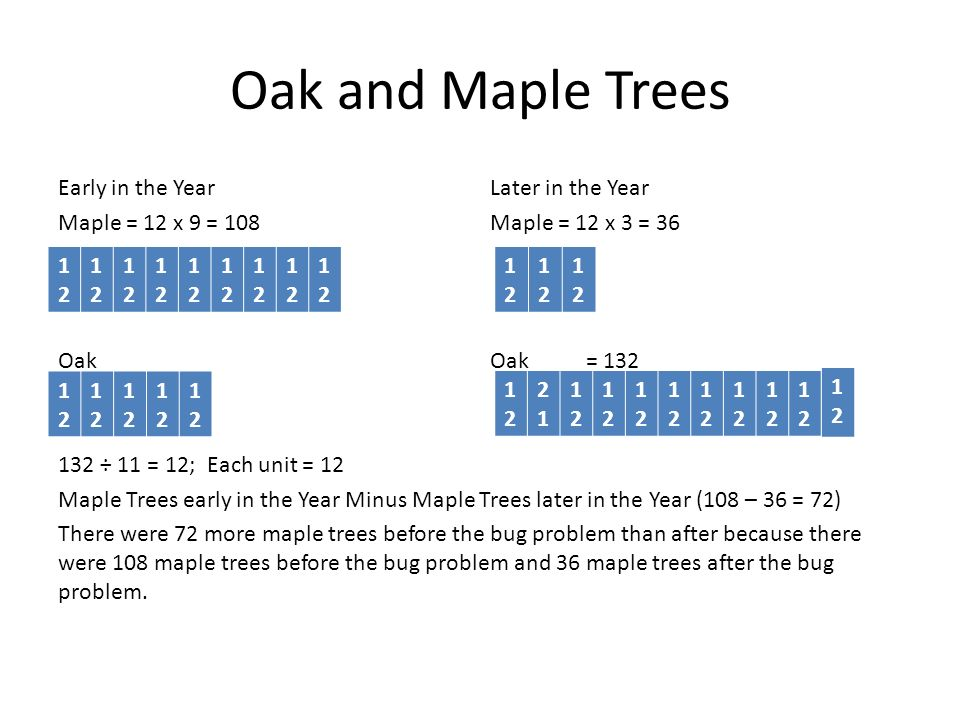 Oak and Maple Trees