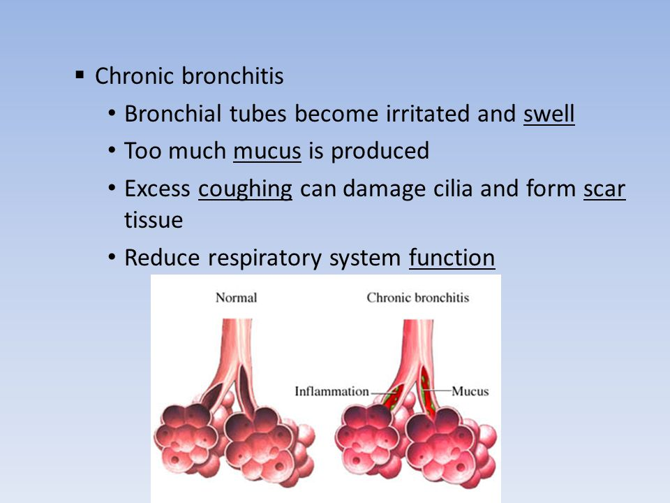 a description of bronchitis when the line the bronchial tubes becomes inflamed Bronchitis is an inflammation or swelling of the bronchial tubes (bronchi), the air passages between the mouth and nose and the lungs more specifically, bronchitis describes a condition where the lining of the bronchial tubes becomes inflamed individuals with bronchitis have a reduced ability to.