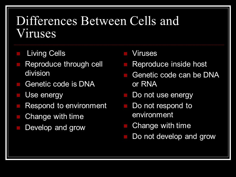Differences between a virus and a