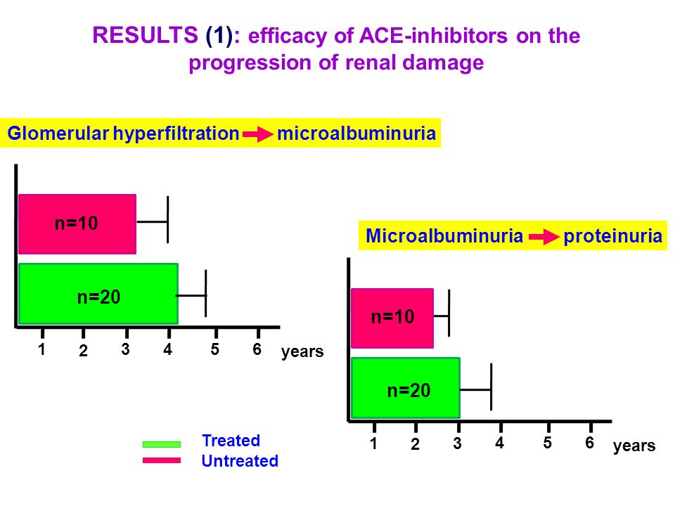 RESULTS (1): efficacy of ACE-inhibitors on the progression of renal damage