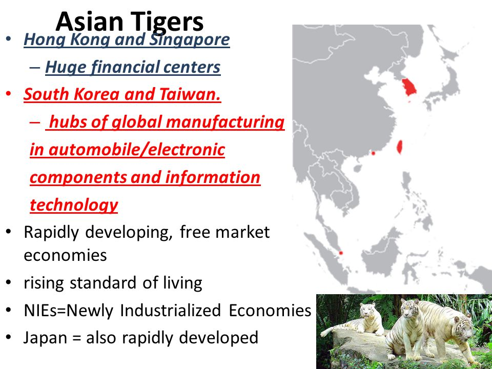 asian newly industrializing countries