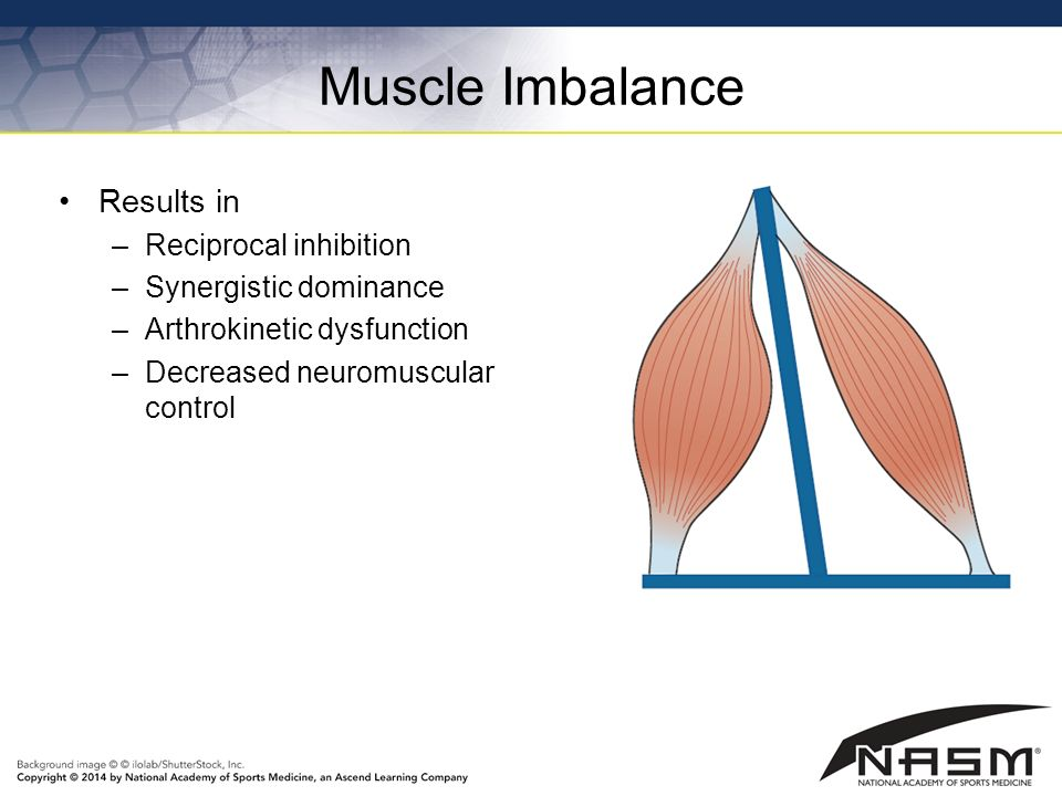NASM Study Guide Chapter 7 - Flexibility Training Concepts ...