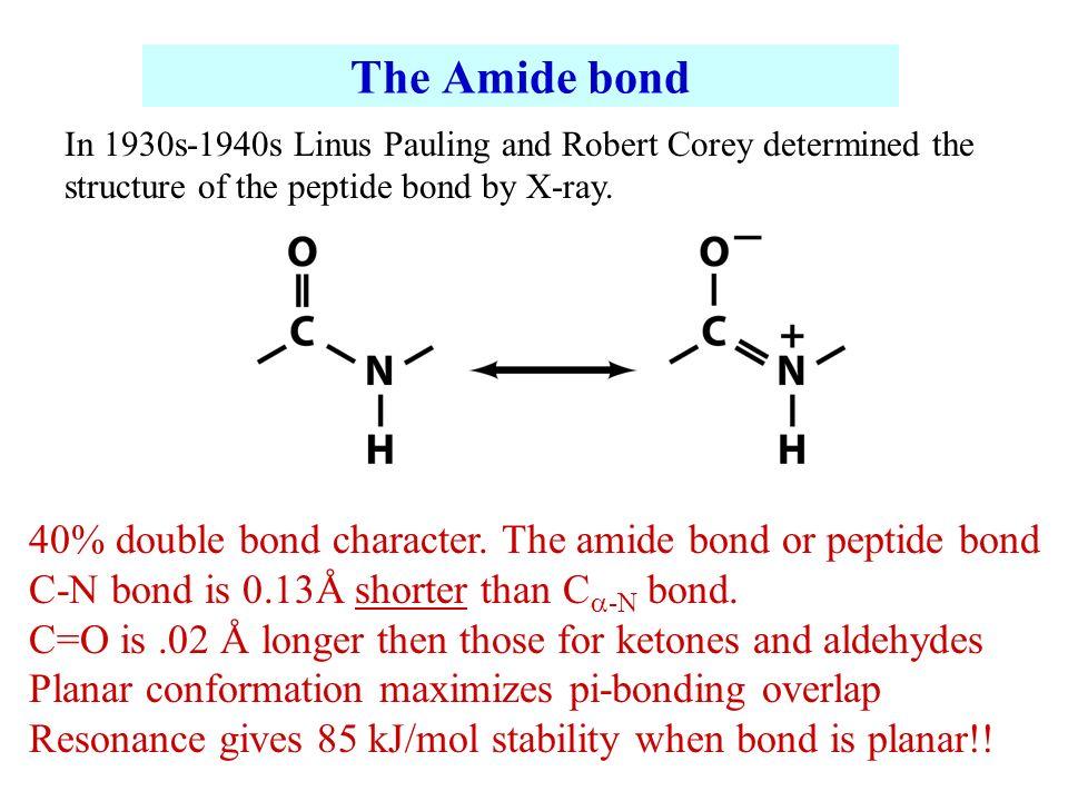 Amide Bond