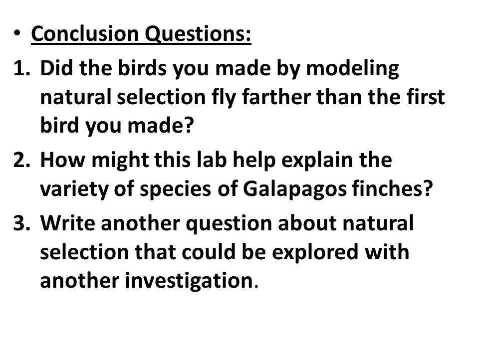 Modeling Natural Selection Lab