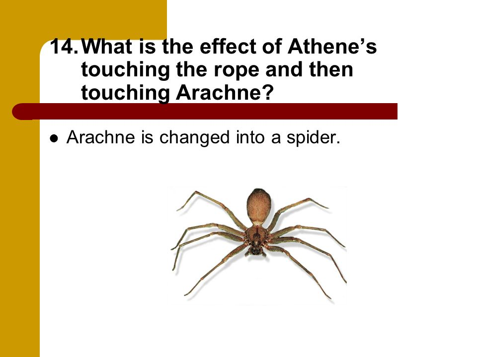 What is the effect of Athene's touching the rope and then touching Arachne