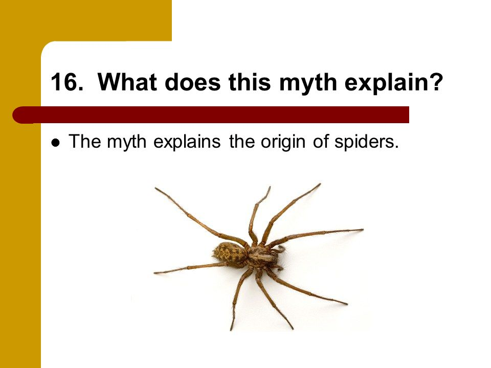 16. What does this myth explain