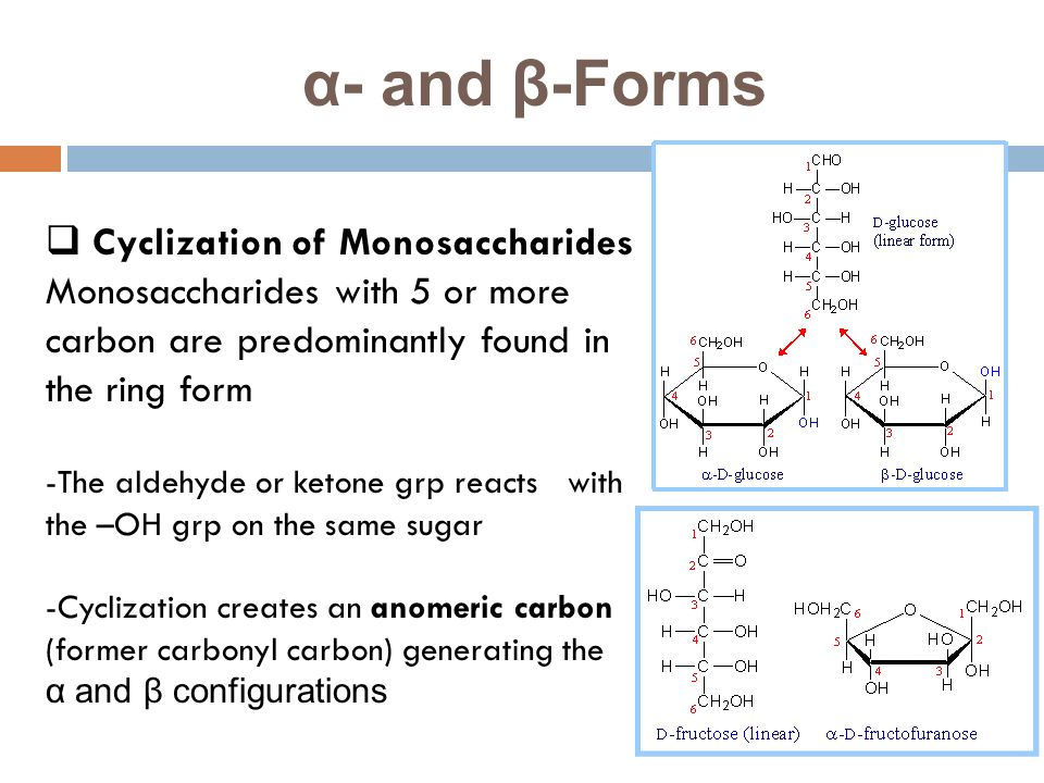 carbohydrates structure and function pdf