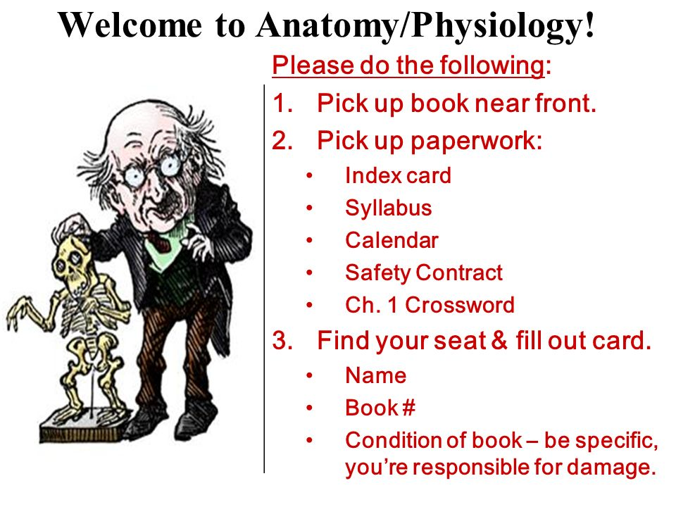 Welcome to Anatomy/Physiology! - ppt video online download