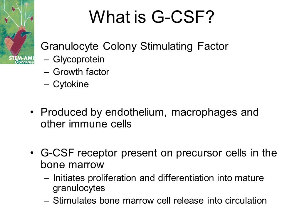What is G-CSF Granulocyte Colony Stimulating Factor