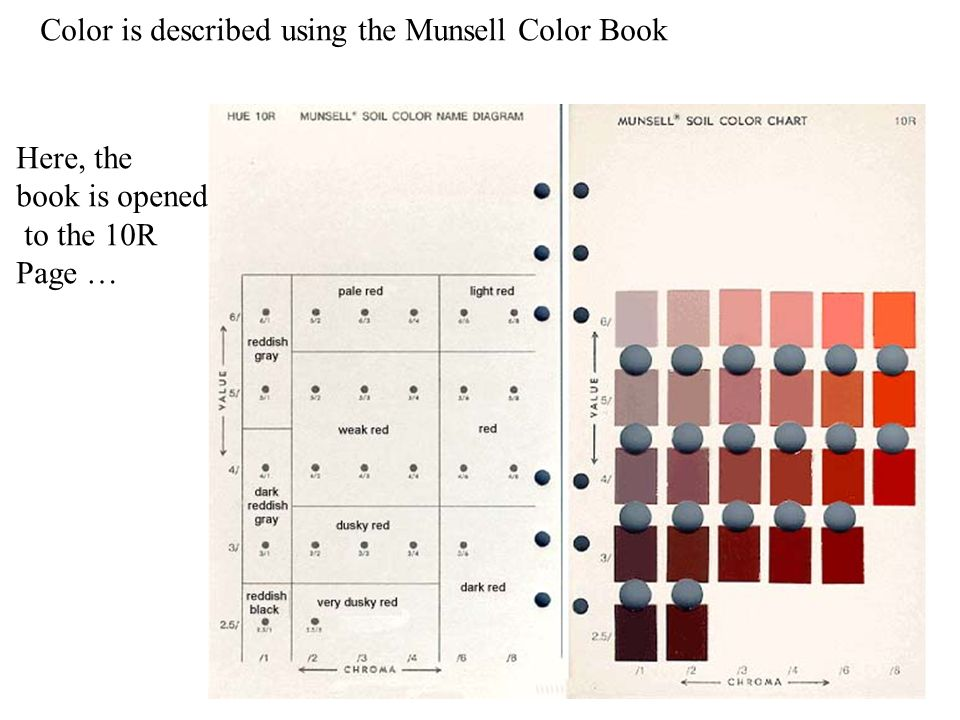 color is described using the munsell color book - Munsell Soil Color Book