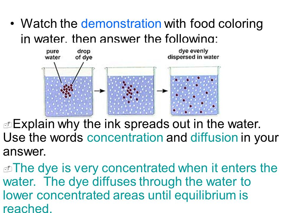 DIFFUSION Food, water, and other substances are made of different ...