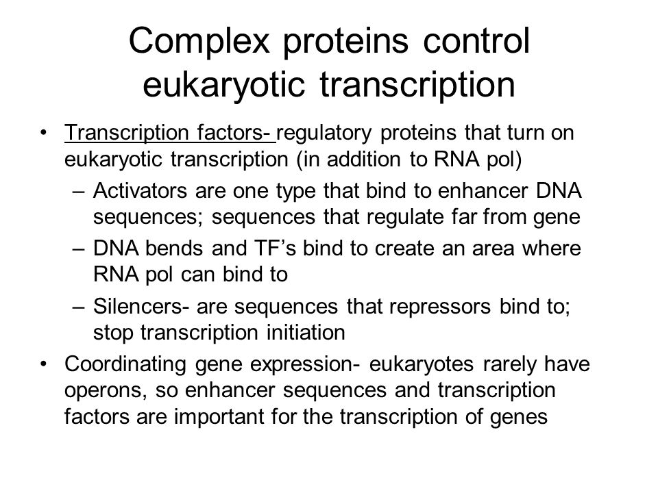 Eukaryotic transcription