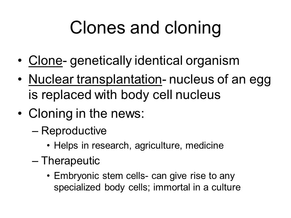 an analysis of human cloning and its effects The term is generally used to refer to artificial human cloning human clones in the form of identical twins are commonplace, with their cloning occurring during the natural process of reproduction effects latest headlines updated 12:56 pm et.