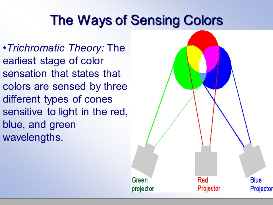 the green light theory Bird in a cage stare at one color similarly, when you stare at a blue object, the blue-sensitive cones adapt, and the reflected red and green light combine to form yellow going further you can design other objects with different colored papers and predict the results.