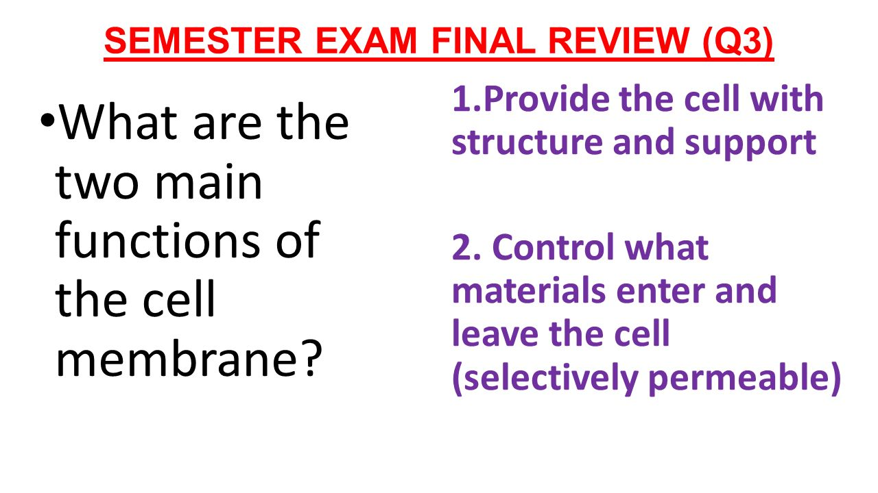 biology final
