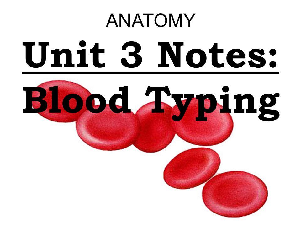 Anatomy notes online