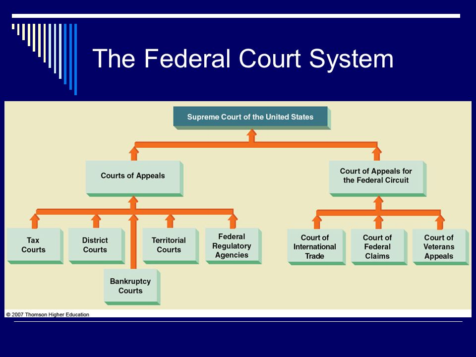 5 issues in america court system