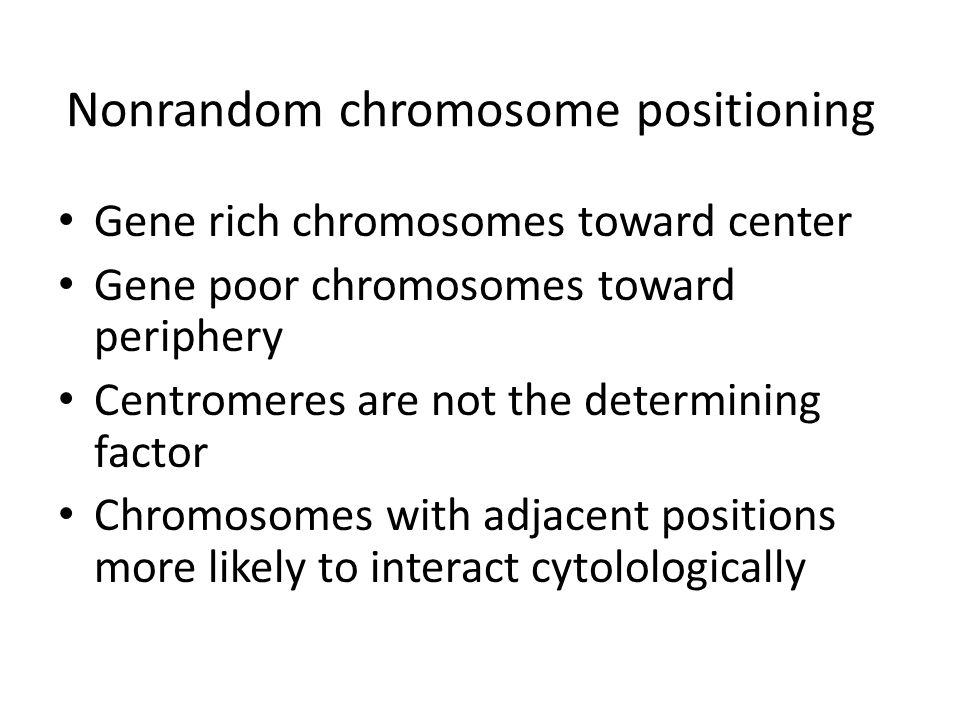 the positioning of chromosomes during cell Chromosome- and spindle-pole-derived signals generate an intrinsic code for spindle position and orientation  to individual aligned chromosomes in cells  to the cell cortex during.