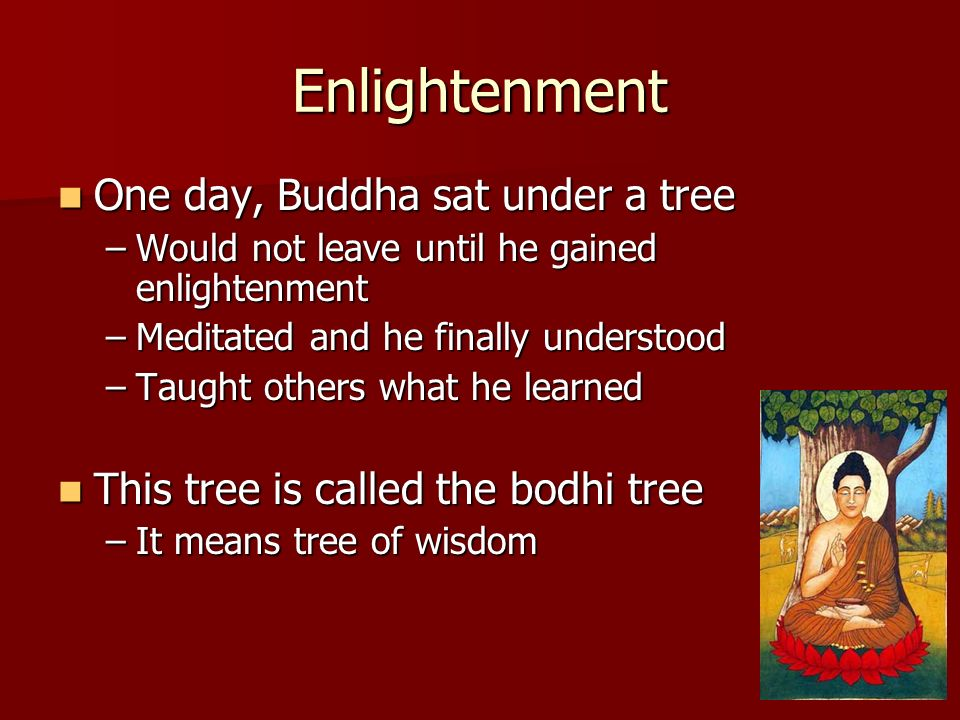 Enlightenment One day, Buddha sat under a tree