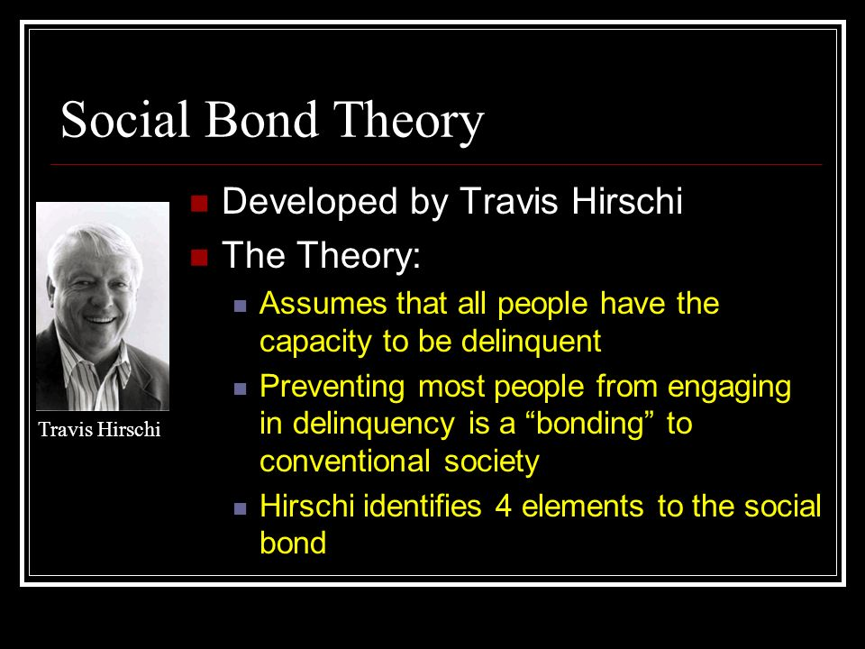 the social bond theory essay Shame and the social bond: a sociological theory  in this essay, i nominate shame, specifically, as the premier social emotion  particularly, made contributions to a theory of shame and .