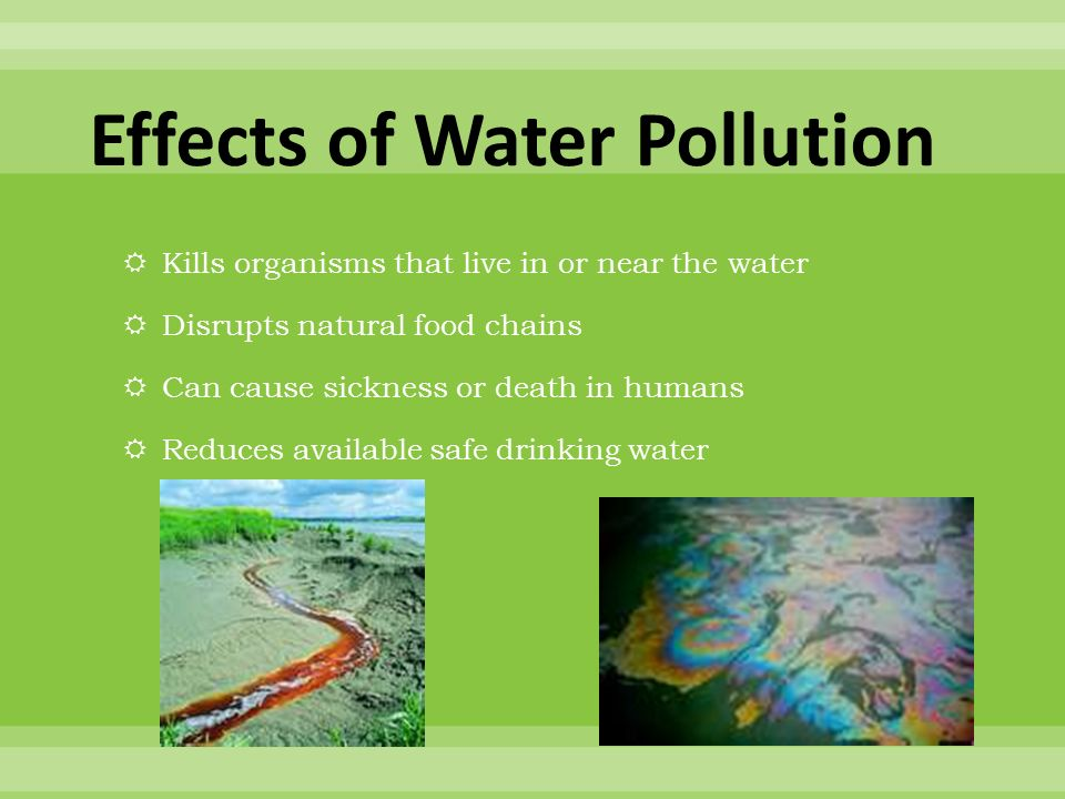 effect of water pollution essay This essay will examine the causes of water pollution, the effect of that issue in life and how to overcome this problem pollution of water in the world can be caused by several reasons firstly, direct reasons which impact immediately in the composition of water.