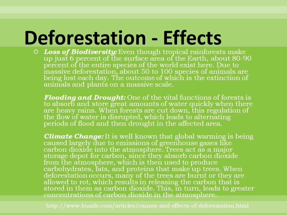 Effects on the environment due to deforestation in the world