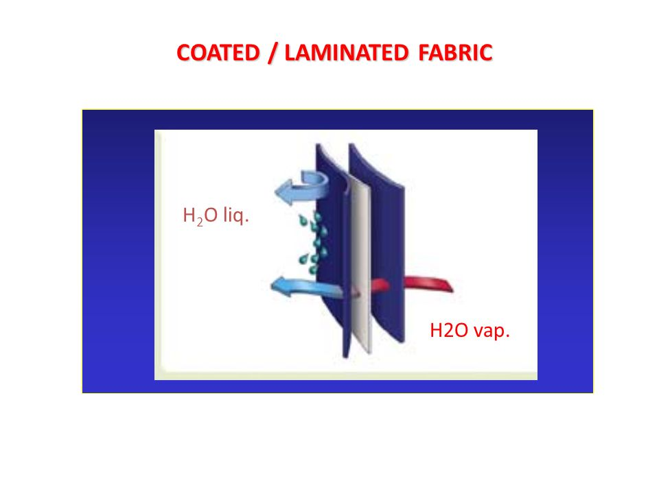 COATED / LAMINATED FABRIC