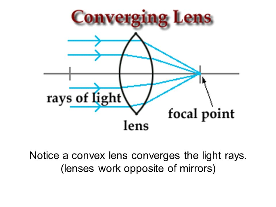 Opposite Rays In Nature