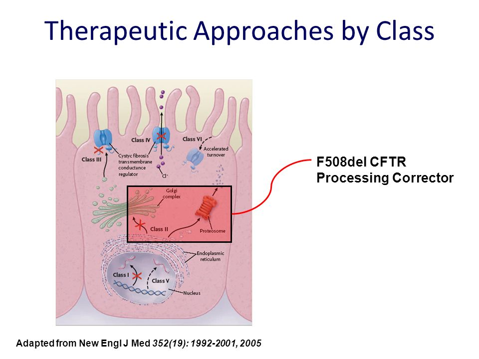 Therapeutic Approaches by Class