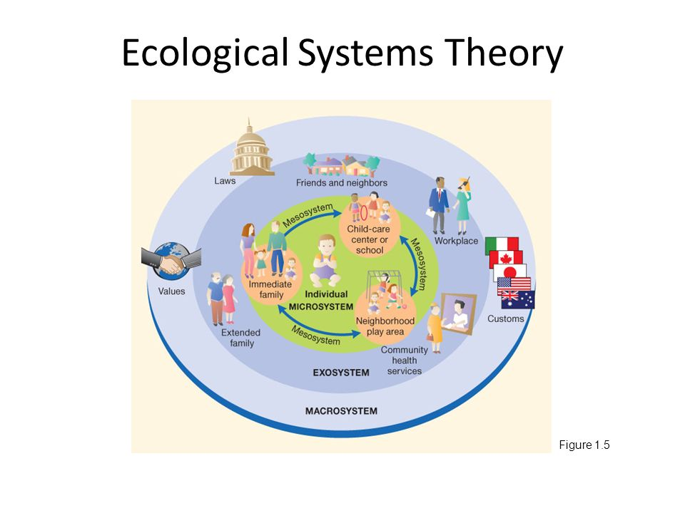 ecological systems theory Urie bronfenbrenner (1917-present) developed the ecological systems theory to explain how everything in a child and the child's environment affects how a.