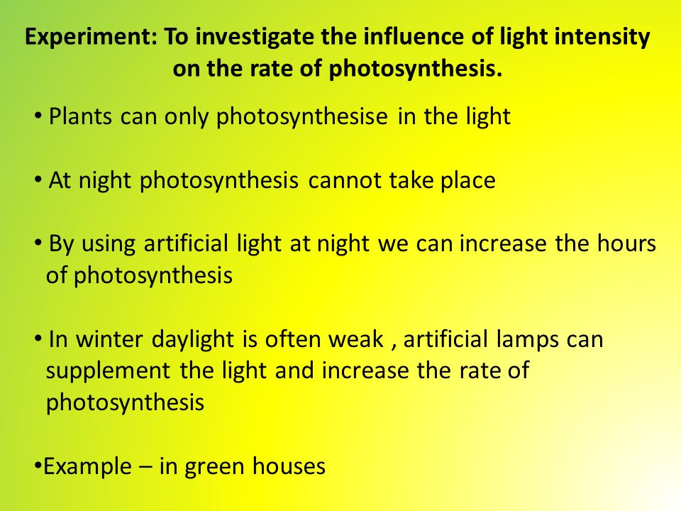 Lab: Exploring the Rate of Photosynthesis